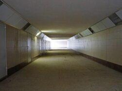 chto tam za etimi neprimetnymi dveryami v podzemnyh perehodah 616e9c3f08071
